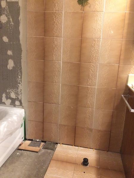 Advice on Bathroom Remodel-imageuploadedbydiy-chat1438693917.026849.jpg