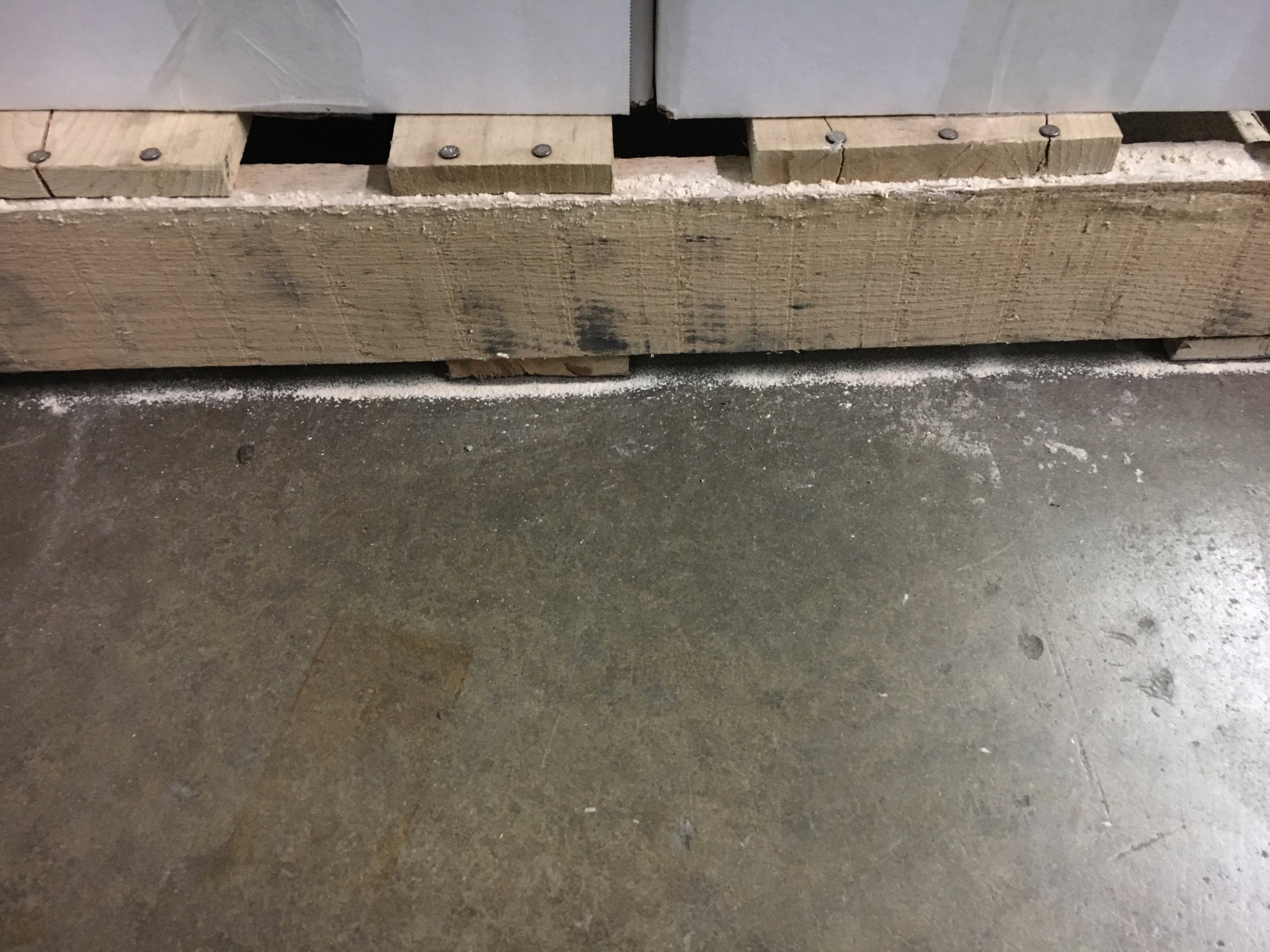 Weird sawdust or powder coming from several pallets-img-0107.jpg