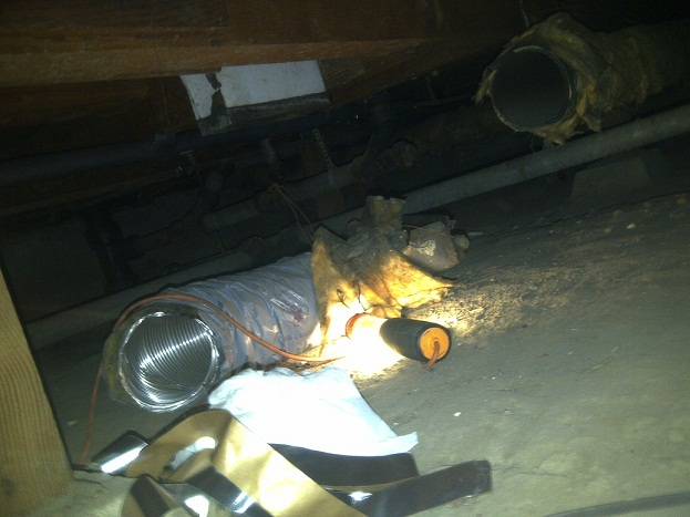 So I looked INSIDE one of my HVAC ducts, see what I find?-img-20111119-00354-s.jpg