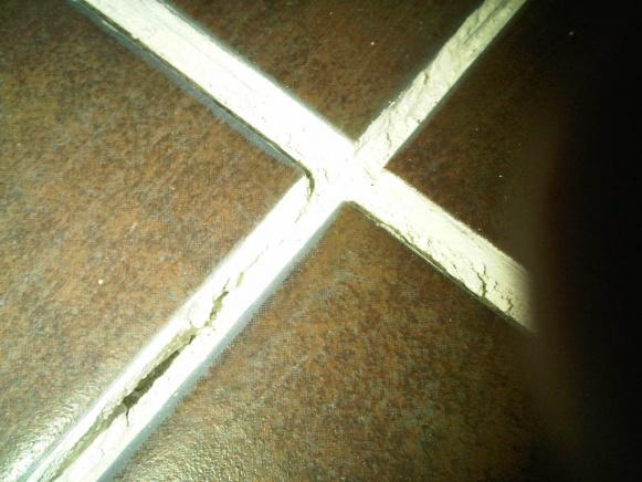 Rookie ceramic tiling mistake!-img-20111220-00317.jpg