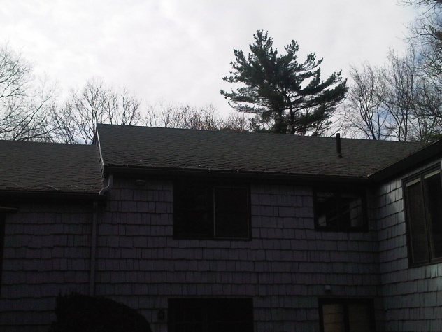 What type of rood framing is this-img-20120412-00140.jpg