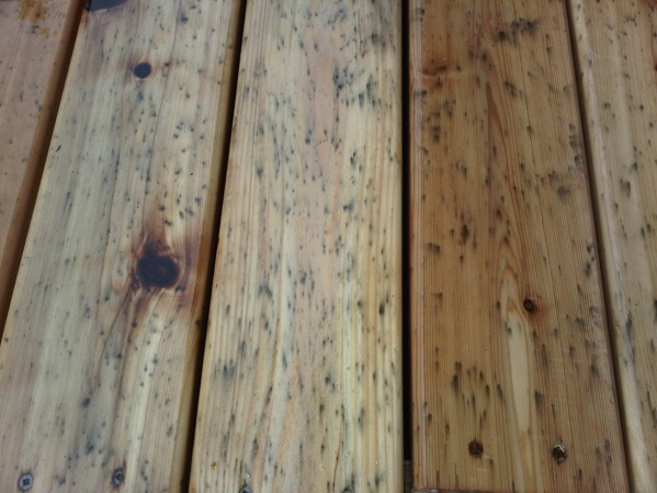 New Cedar Deck Mold/Mildew Stains?-img-20120605-00051.jpg