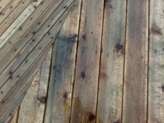 New Cedar Deck Mold/Mildew Stains?-img-20120605-00052.jpg