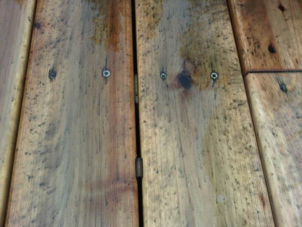 New Cedar Deck Mold Mildew Stains General Diy