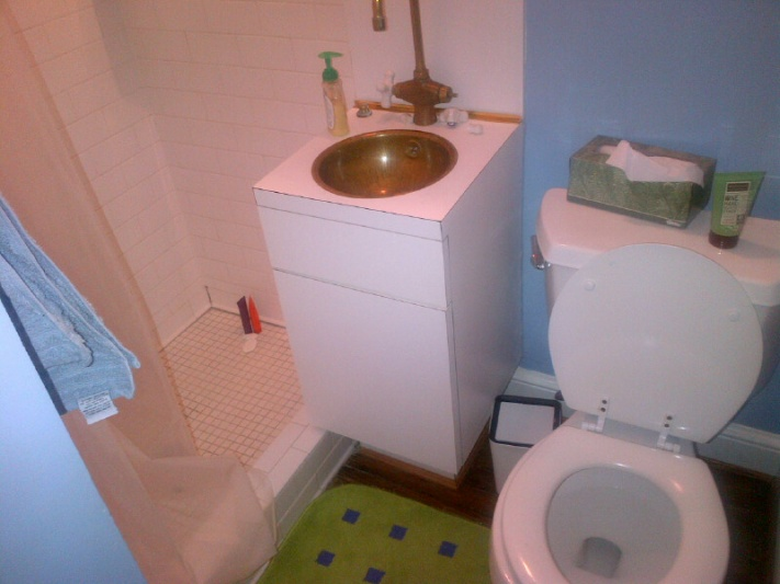 Tricky bathroom remodel - any suggestions?-img-20130214-00005.jpg