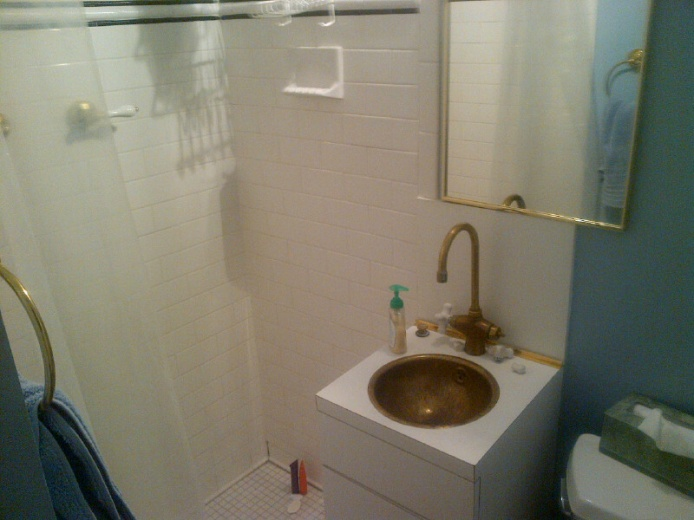 Tricky bathroom remodel - any suggestions?-img-20130214-00006.jpg