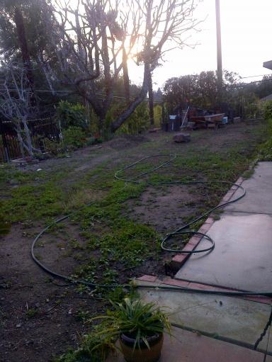 Backyard - Landscaping-img-20140209-00097.jpg