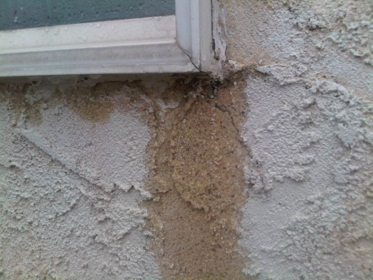 Serious stucco/window breach issues?-img00009-20100916-1734.jpg
