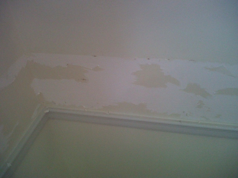 wallpaper removal problems-img00014-20101024-1205.jpg