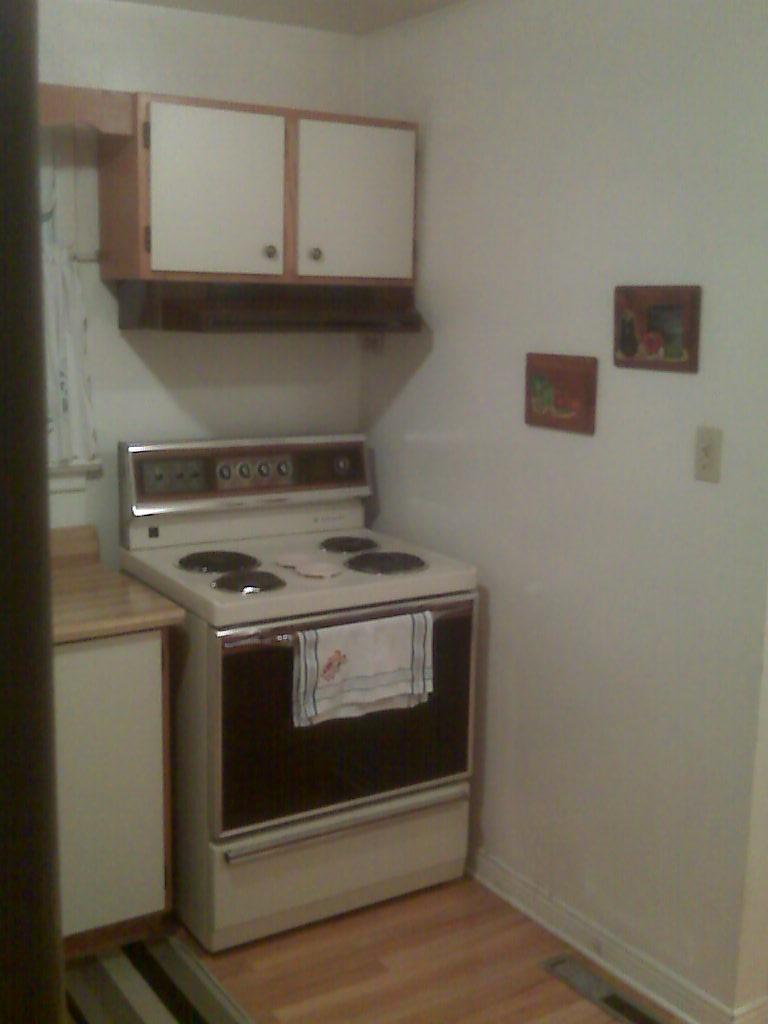 Renovating in-laws' kitchen-img00028.jpg