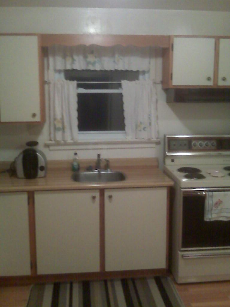 Renovating in-laws' kitchen-img00029.jpg