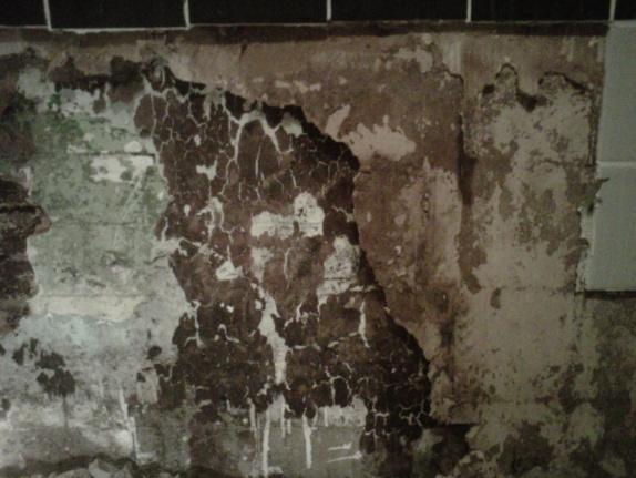 Repairing/redo of 1930s home bathroom wall-img00052-20100226-2026.jpg