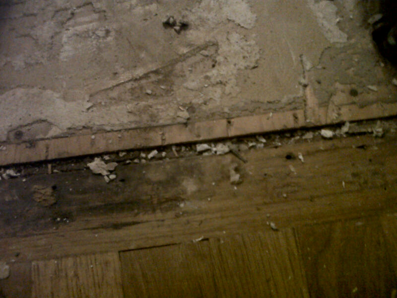 Got old floor up - OK experts....what next - pic inside-img00160-20111029-1115.jpg