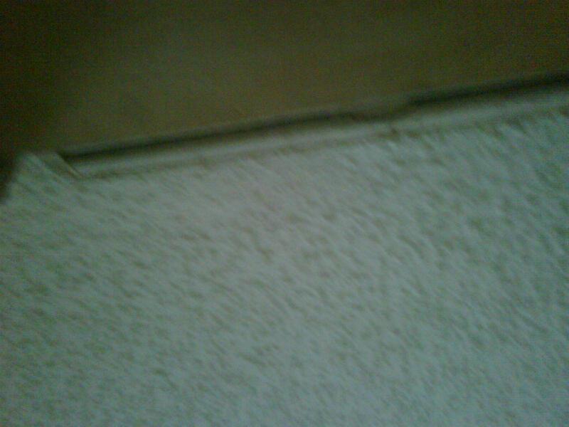 Ceiling Sagging?-img00165-20120519-1843.jpg