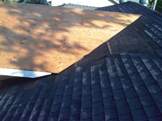 New Tar Paper With To Tie In With Existing Roof Tar Paper. Img00328