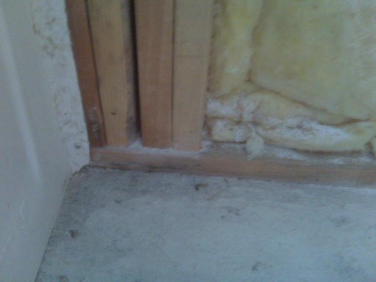 Black mold on plywood subfloor-img00389.jpg