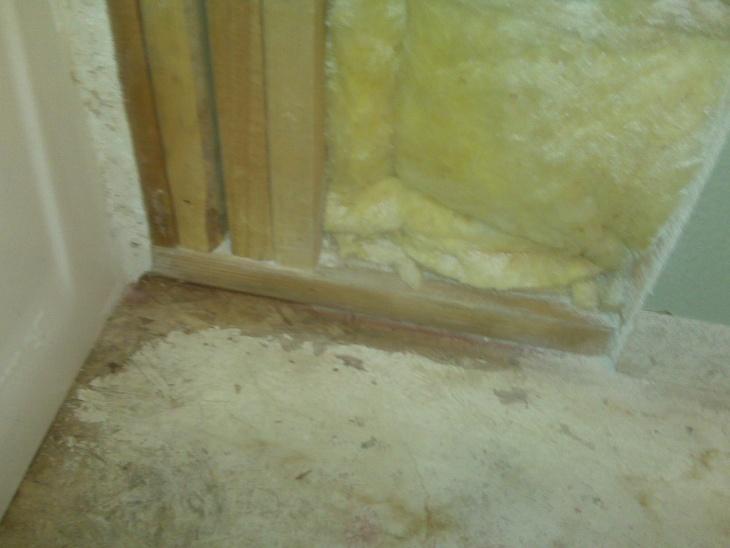 Black mold on plywood subfloor-img00419.jpg