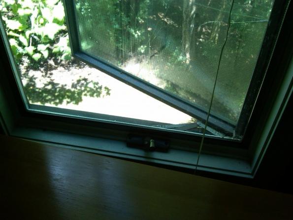 replacing andersen windows-img00490-20110810-1302.jpg