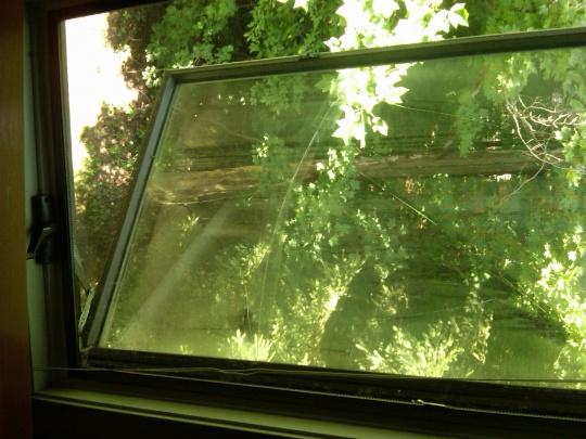 replacing andersen windows-img00491-20110810-1303.jpg