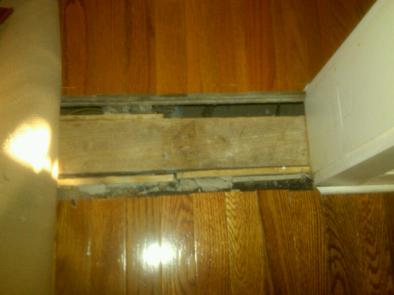 Hardwood Floor Transition transition between carpet and hardwood floor Hardwood Flooring Room Transition Img00514 20101109 0734jpg