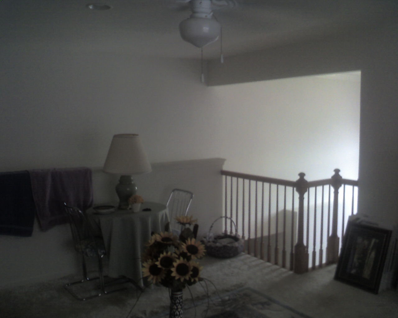 I need to enclose my Loft. Looking for your opinion what I should do.  Pics attached-img057.jpg