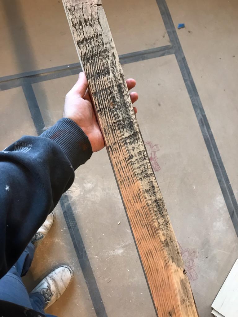 Oil or water based stain for cedar shelves?-img958120_01.jpg