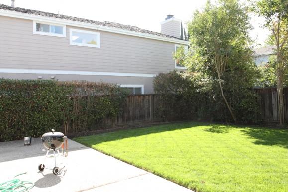 New lawn + garden - garden is now a swamp-img_001.jpg