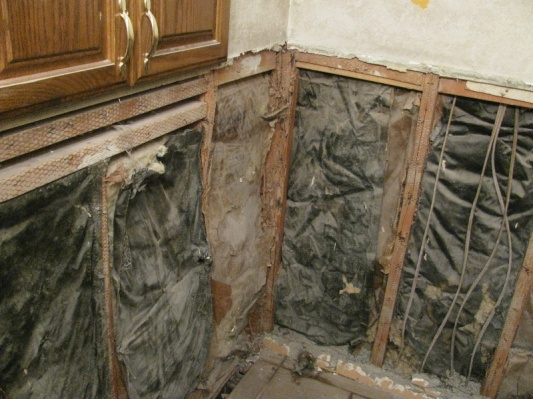!st serious DIY Bathroom remodel- wish me luck!-img_0015.jpg
