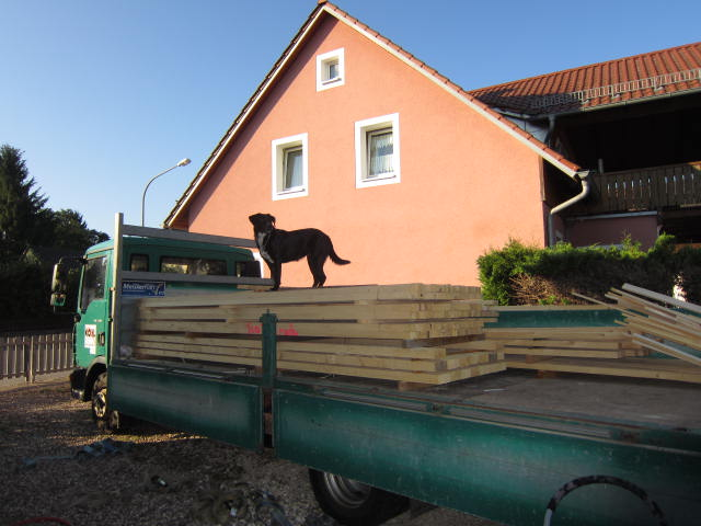 German House Rebuild-img_0020.jpg