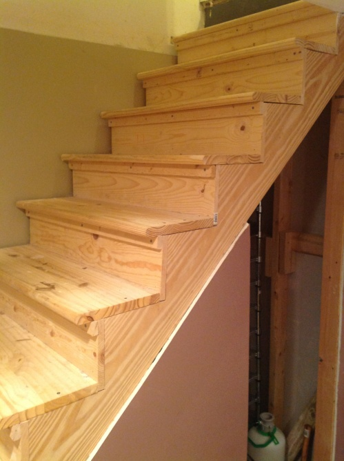 Lighting Basement Washroom Stairs: Finishing Basement Stairs