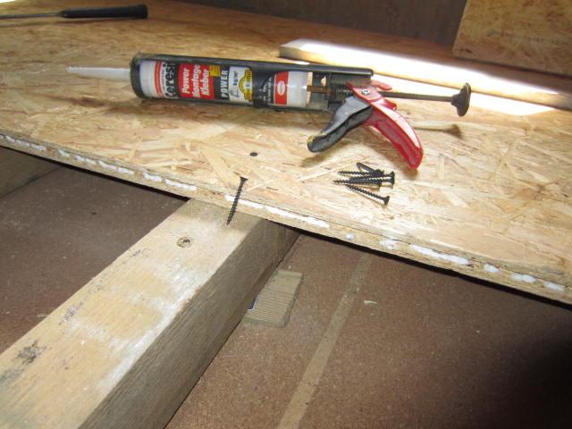 German House Rebuild-img_0023.jpg