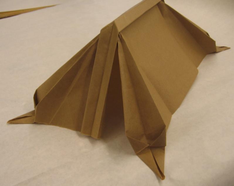 Cardboard tents-img_0025.jpg