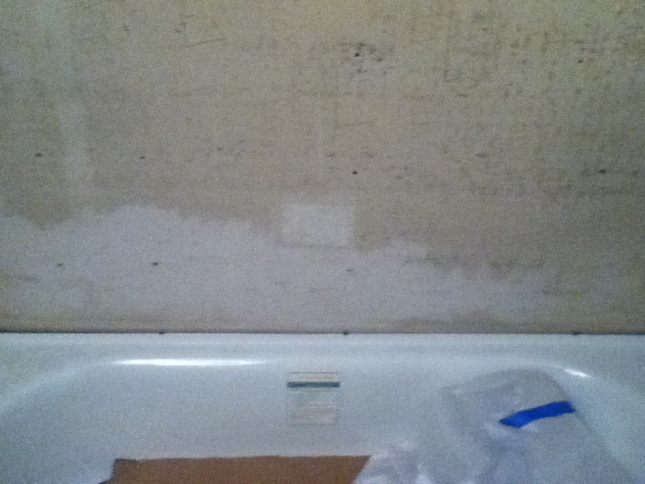 Gap between bathtub and wall. Please help :(-img_0033.jpg