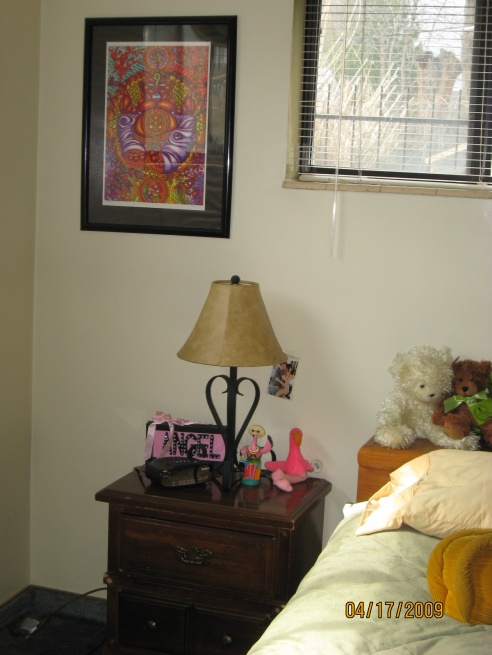 Hodge Podge Bachlorette Bedroom needs feng shui decoration-img_0063.jpg