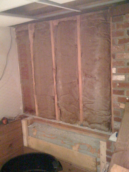 Replacing drywall, do I need to replace the insulation?-img_0064.jpg