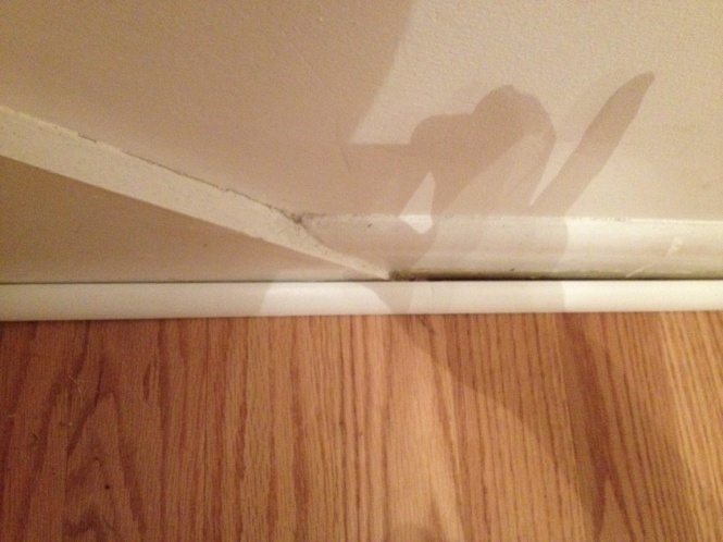 Stair Baseboard Uneven With Floor Baseboard. Need To Install Quarter  Round. Img_0067.