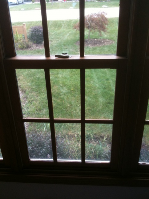 Can anyone identify these windows?-img_0093.jpg