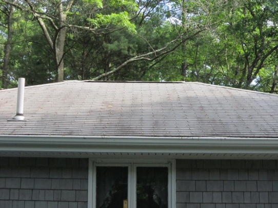 Ranch Style Home Attic Ventilation-img_0116a.jpg