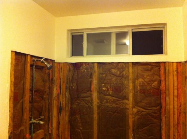 Tiling Shower walls-img_0121.jpg