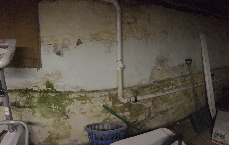 removal of possible mold moisture on basement brick foundation wall