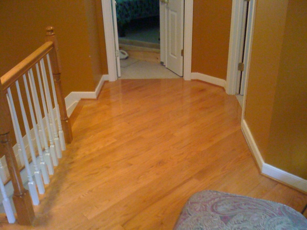 Hallway Carpet to Wood Conversion - Some Beginner Questions-img_0170.jpg