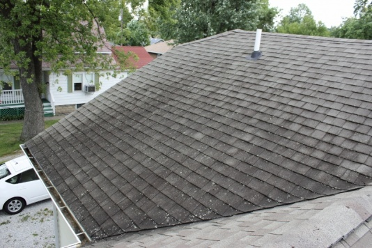 Roof Cap / Staining - Lichen Question-img_0177-800x533-.jpg