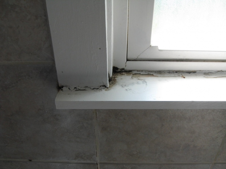 Window In Bathroom Shower Mold Building Amp Construction