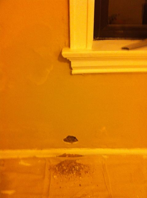 Started Exposed Brick Wall, Studs within brick, should I stop?-img_0236.jpg