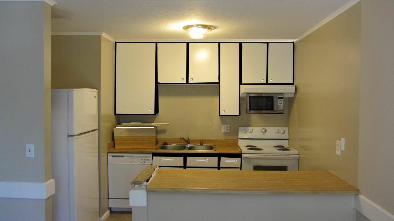 kitchen cabinets-img_0242-copy-.jpg