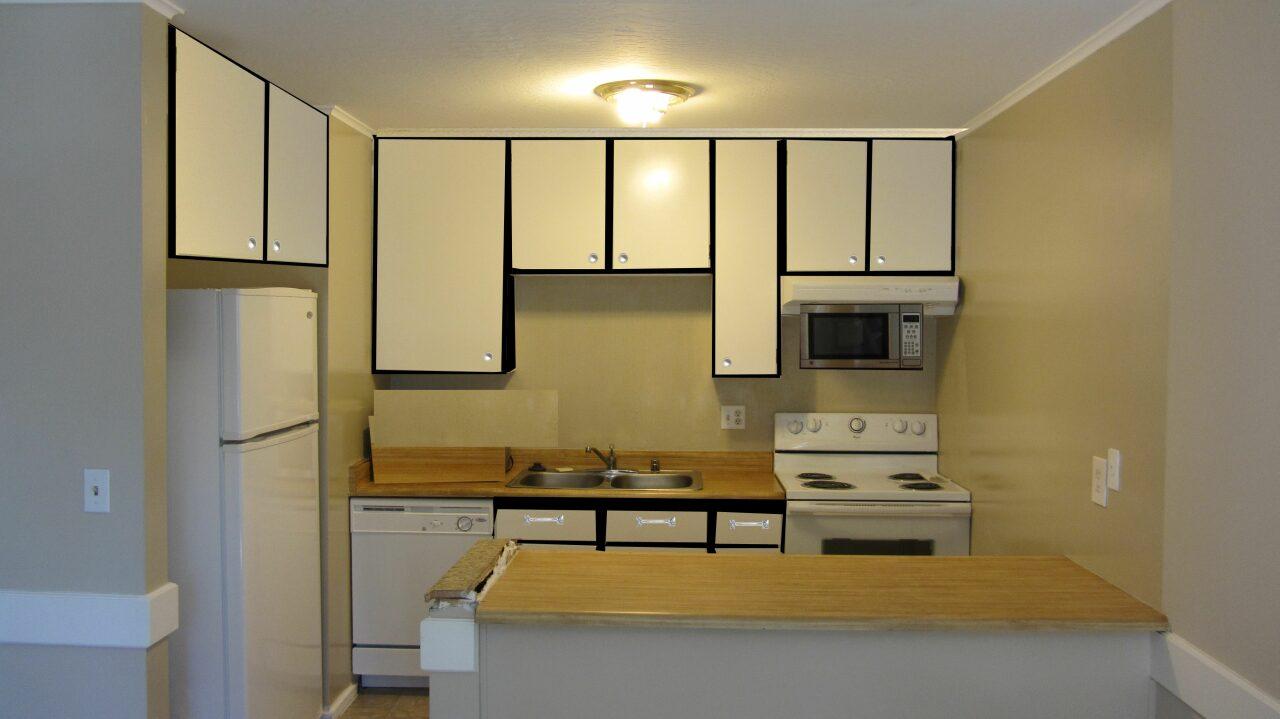 kitchen cabinets-img_0242-copy3-.jpg