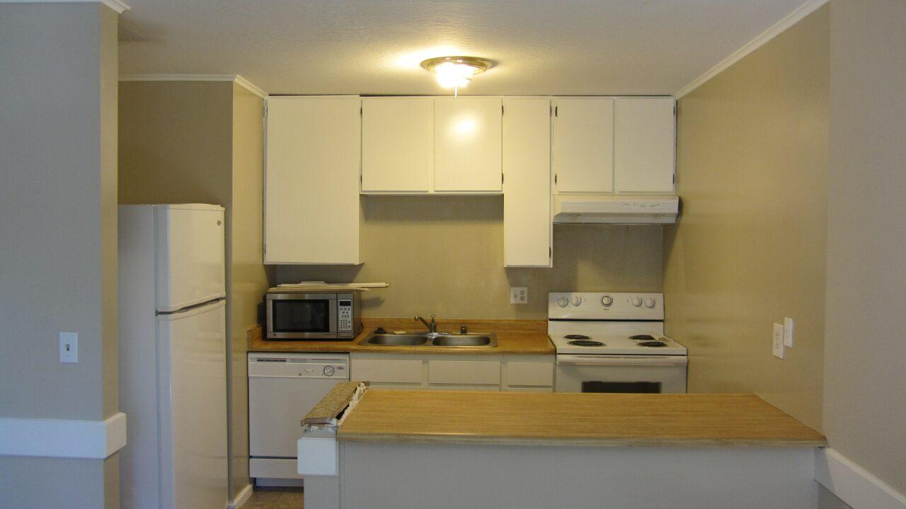 kitchen cabinets-img_0242-.jpg