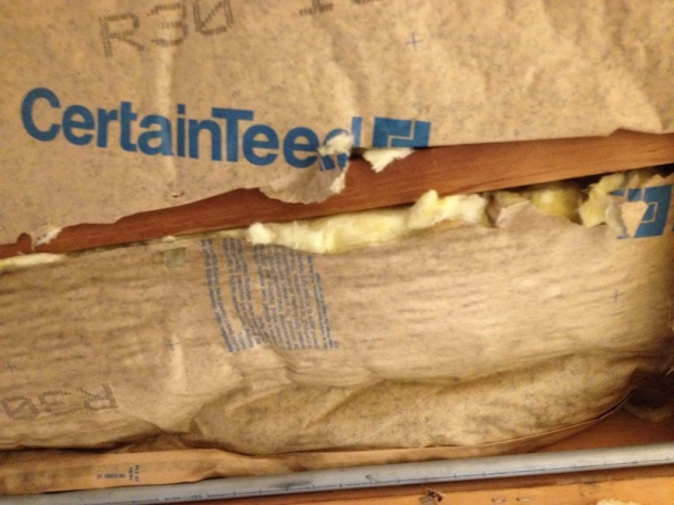 Conditioned Crawl Space Insulation-img_0245.jpg