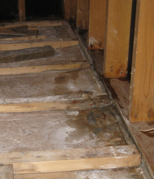 Opinions on this kitchen floor-img_0298-trim.jpg