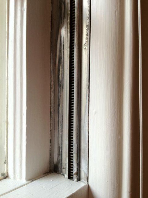 Squeaky windows-img_0343.jpg